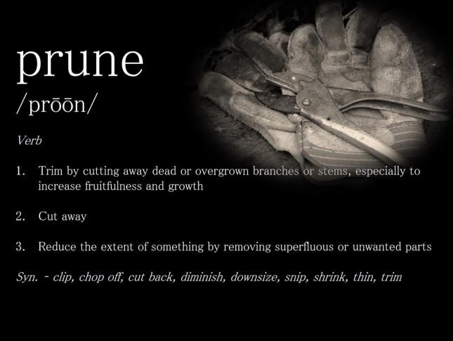 prune_def_005b